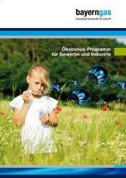Informationsbroschüre Ökobonusprogramm (PDF) - Bayerngas GmbH