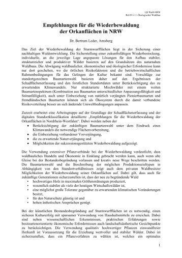 Empfehlungen zur Wiederbewaldung nach Kyrill, Dr. Leder, 03-2007