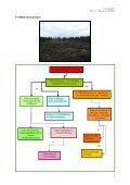 Empfehlungen zur Wiederbewaldung nach Kyrill, Dr. Leder, 03-2007 - Seite 3