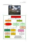 Empfehlungen zur Wiederbewaldung nach Kyrill, Dr. Leder, 03-2007 - Seite 4