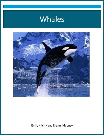 Whales - the Scientia Review