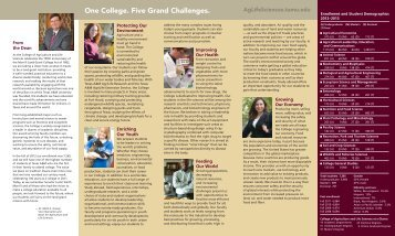 One College. Five Grand Challenges. - Texas A&M AgriLife - Texas ...