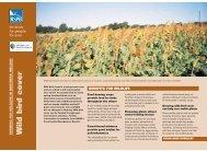 Wild bird cover advisory sheet (Northern Ireland) - RSPB