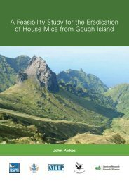 A Feasibility Study for the Eradication of House Mice from ... - RSPB