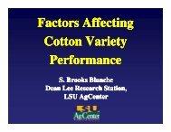 Factors Affecting Cotton Variety Performance - Louisiana ...