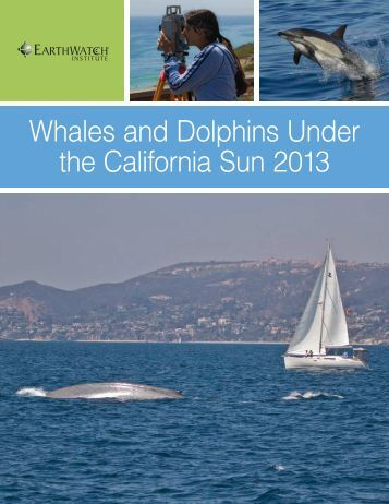 Whales and Dolphins Under the California Sun 2013 - Earthwatch ...