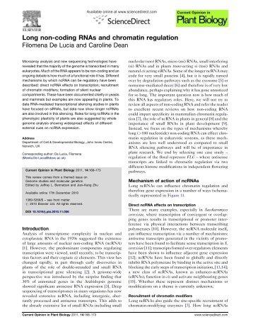 Long non-coding RNAs and chromatin regulation - John Innes Centre