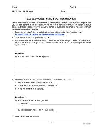 Worksheets Restriction Enzyme Worksheet restriction enzyme worksheet delibertad enzymes worksheet