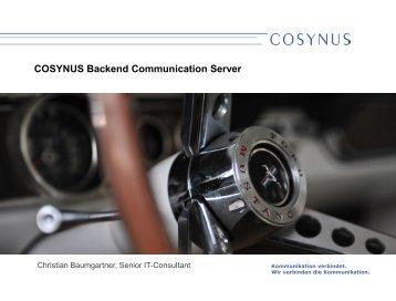 Schnittstelle - Cosynus