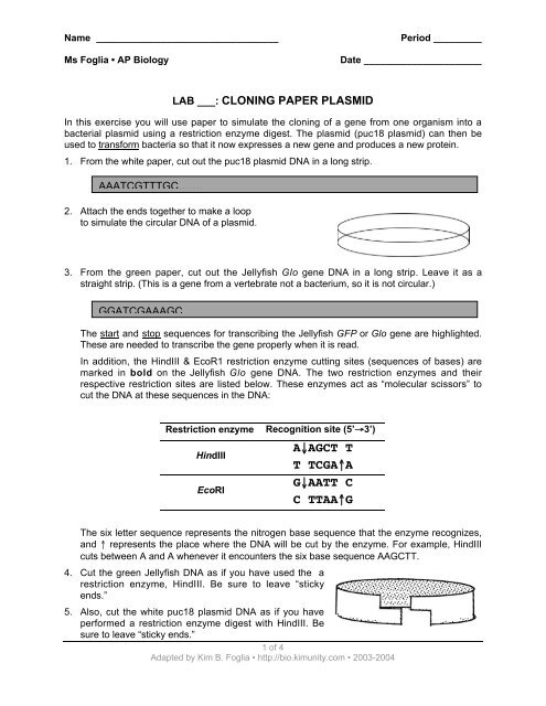 cloning paper