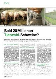Bald 20 Millionen Tierwohl-Schweine?