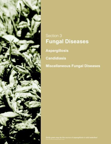 Section 3: Fungal Diseases - National Wildlife Health Center