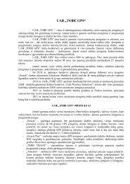pdf formatas