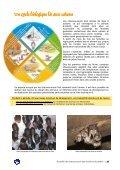 Accueillir des chauves-souris dans le bâti et les jardins - Société ... - Page 7