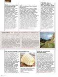 montagne - ANEM - Page 6