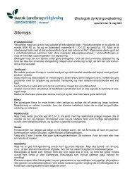 Silomajs - LandbrugsInfo