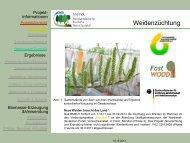 Herkunftskontrolle bei forstlichem Vermehrungsgut mittels stabiler ...
