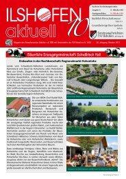 Ausgabe 10/2013 - Gewerbeverein Ilshofen eV / Startseite