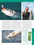 Pêche lourde aux LS - Page 2