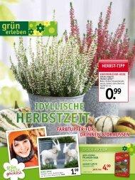 hErbStzEit - Gartencenter Fahr Dornstetten