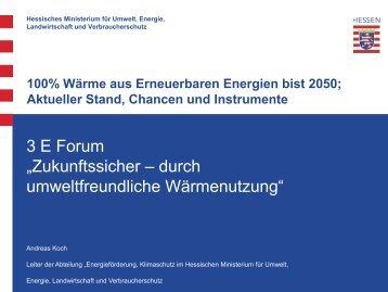 100% Wärme aus Erneuerbaren Energien bis 2050; Aktueller Stand ...