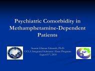 Psychiatric Comorbidity In Methamphetamine-Dependent Patients