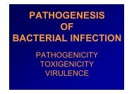 PATHOGENESIS OF BACTERIAL INFECTION - LF