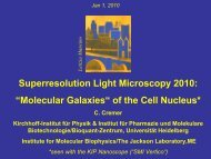 Molecular Galaxies of the Cell Nucleus 2010 (PDF)