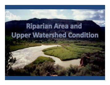 Riparian Area and Upper Watershed Condition - University of New ...