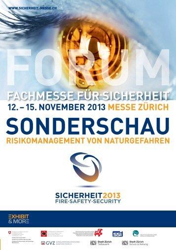 Programmflyer - SICHERHEIT 2013