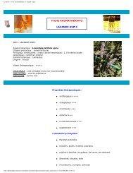 Conseils - Fiche Aromathérapie - Lavande Aspic