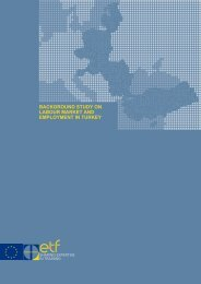 Background Study on Labour Market and Employment in Turkey
