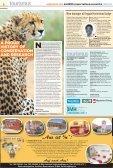 september 2013 wildlife conservation & research column - Seite 2