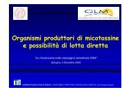 Roberto Causin - Università di Padova (scarica la presentazione)