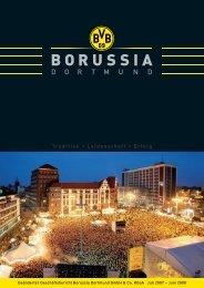 geänderter Geschäftsbericht 2007/2008 KGaA - BVB Aktie ...