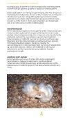 Krav til kalkunproduksjon - Nortura - Page 4