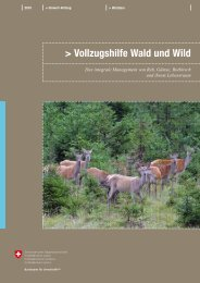 Vollzugshilfe Wald und Wild. Das integrale ... - Waldwissen.net