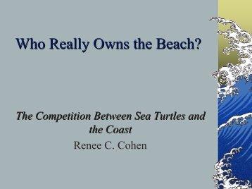 Cohen Marine Turtles - LFIP