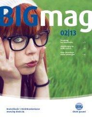 BIGmag 02/13