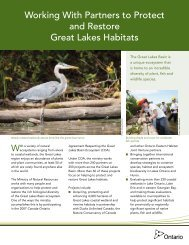 Working With Partners to Protect and Restore Great Lakes Habitats