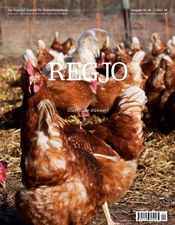 RegJo Suedniedersachsen 1/2013 - Polo+10 Das Polo-Magazin