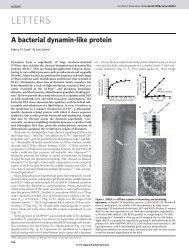 nature BDLP 2006.pdf