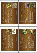 dermatologievortrag materia medica-2012 - Page 5