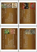 dermatologievortrag materia medica-2012 - Page 7