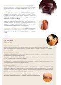 Industrie du cuir et de la chaussure - Page 3