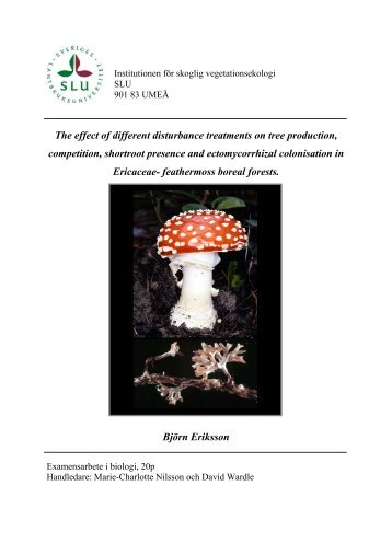 The effect of different disturbance treatments on tree ... - Epsilon - SLU