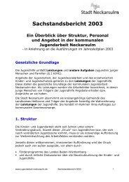 Sachstandsbericht 2003 - Kommunale Jugendarbeit Neckarsulm