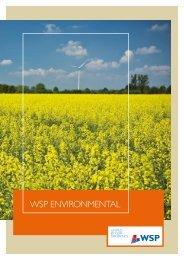 WSP ENVIRONMENTAL - WSP Group