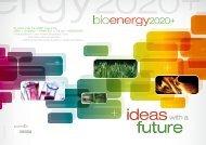 download - Bioenergy 2020+