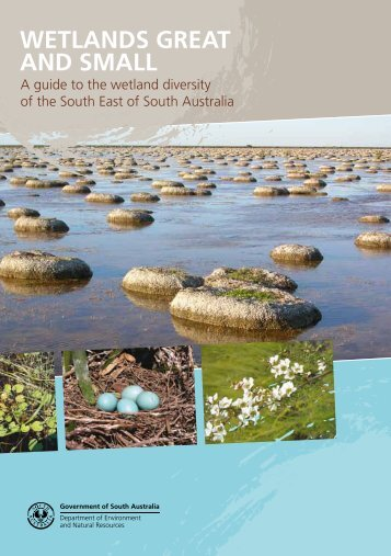 WETLANDS GREAT AND SMALL - South East Natural Resources ...